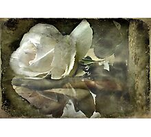 """Reflecting on Margaret..."" Photographic Print"