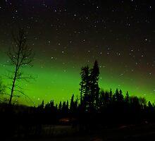 Feb 4th/11 Auroras by peaceofthenorth