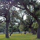 Tree Dance by eruthart