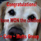Cute Mutts Banner by TeAnne