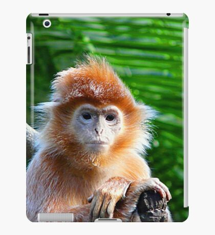 GUESS WHO WON THE STARING CONTEST? iPad Case/Skin