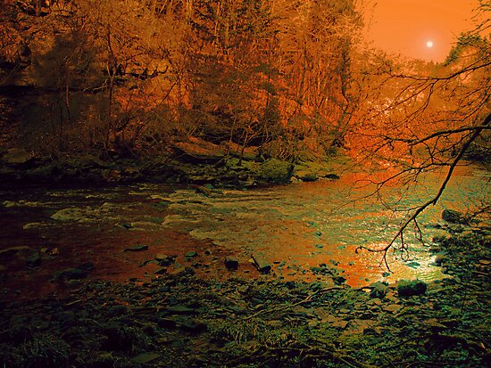 YOU WILL FIND YOURSELF HERE BY THE RIVER by leonie7