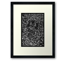 Victim #147 Framed Print