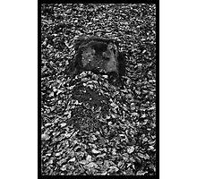 Victim #147 Photographic Print