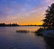 An Evening at Seney by Megan Noble