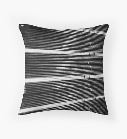 Shades ... Throw Pillow