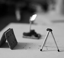 Biscuits, Matches, Raisins, Fire by Nicoras Calin