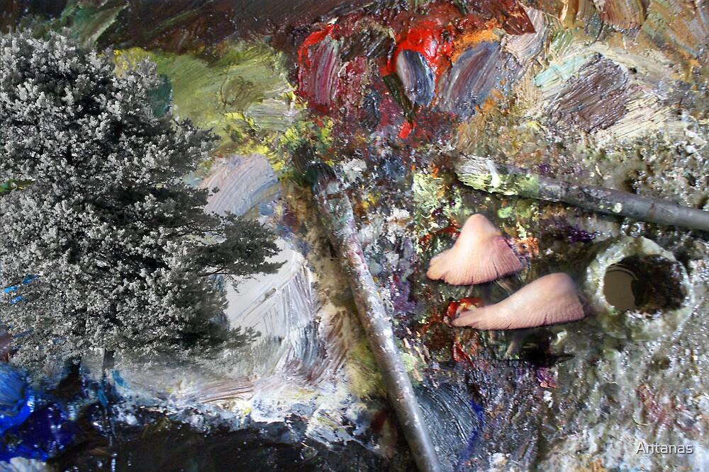 Art palette,  pine and mushrooms by Antanas