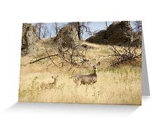 Freeze, Bambi! Greeting Card