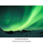 Aurora Borealis by Musicphoto-it