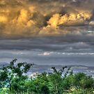 Head in the Clouds - HDR by Margo Naude