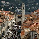 Dubrovnik from on high by BronReid