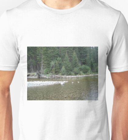 Ribs Unisex T-Shirt