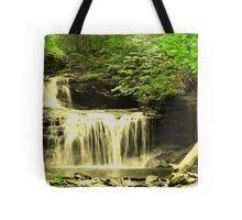 Rickett's Glen Tote Bag