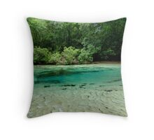 Williford Spring Throw Pillow