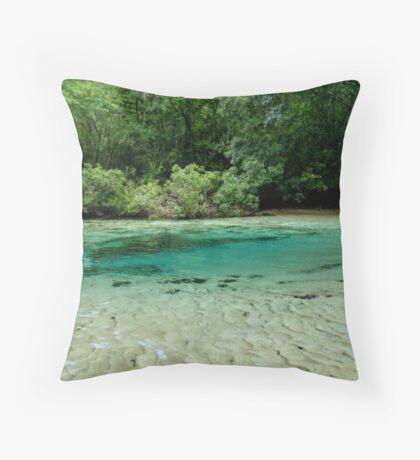 Williford Spring Throw Pillow