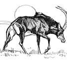 Sable antelope by David  Kennett