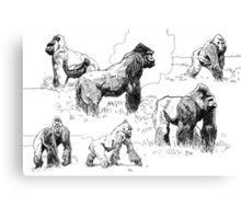 Gorillas Canvas Print