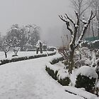 Botanical Garden after Snowstorm #2 by Mukesh Srivastava