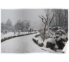 Botanical Garden after Snowstorm #2 Poster
