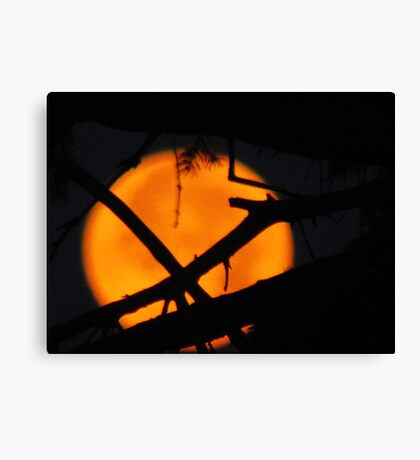 The Moon In The Morning Canvas Print