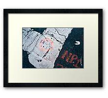 NPI 253 Framed Print