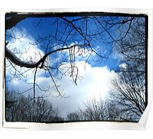Clouds & Trees Poster