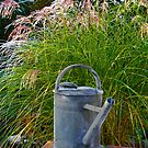 Watering Can by RosiLorz
