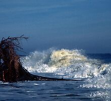 Surf in the Gulf by Jim Haley