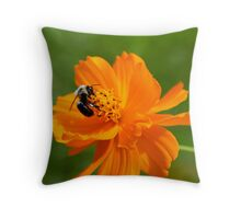 Rhapsody in Orange Throw Pillow