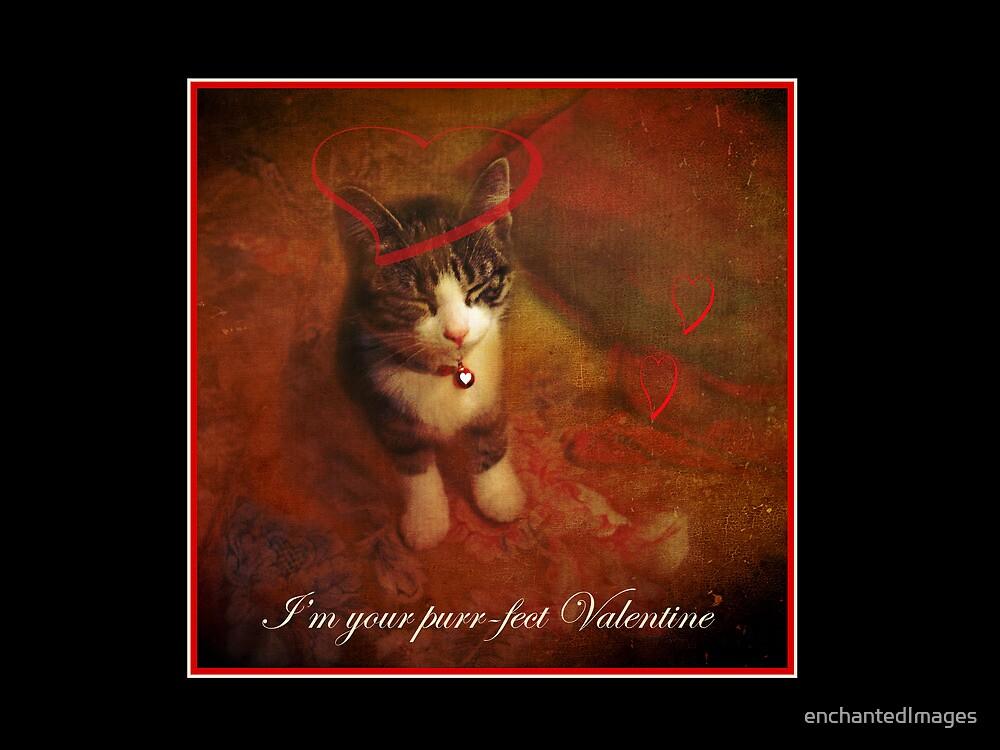 Purr-fect Valentine by enchantedImages