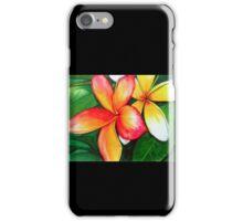Frangipani iPhone Case/Skin