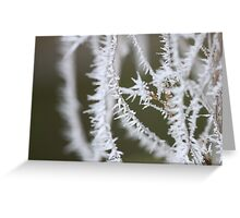Icicle  - JUSTART © Greeting Card