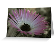 Selective colouring flower Greeting Card