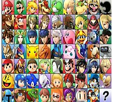 Smashified 3DS Roster Photographic Print