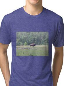 Bison 2, Elk Lake, Alberta, Canada Tri-blend T-Shirt