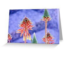 chameleon torch lilies Greeting Card