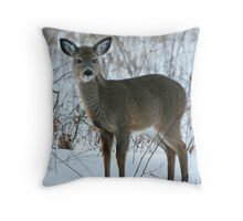 Little Pudgy Throw Pillow