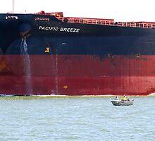Coal ship Pacific Breeze - Newcastle Harbour NSW Australia by Phil Woodman