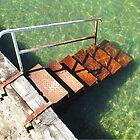 Rusty Steps by Christine Wilson