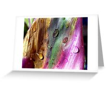 cycle of life,   Greeting Card