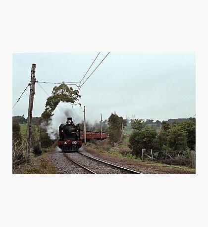 1970s K 190 under steam near Eltham with excursion train Photographic Print