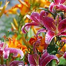 Lovely Lillies by Diane Blastorah