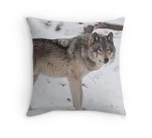 Silent Runner Throw Pillow