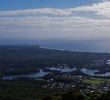 Overlooking Laurieton, NSW. by Liz Worth