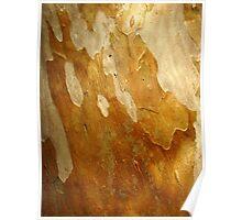 Honey Bark Poster