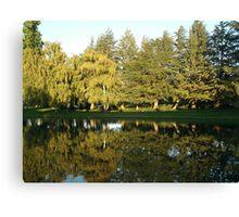 California Reflections Canvas Print