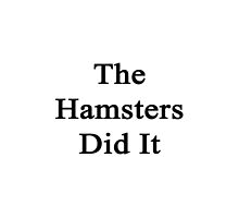 The Hamsters Did It  by supernova23