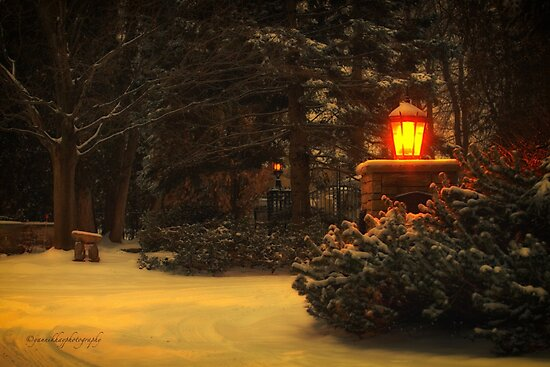 Silent Night... by Yannik Hay