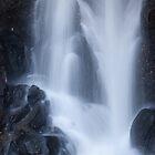 Splashing Down by Cliff Williams